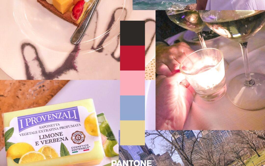 Sapori, Ayurveda e colori: intervista a Michela Bellomo, grafica e visual branding